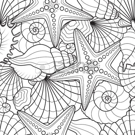 Seashell Pages For Adults Coloring Pages