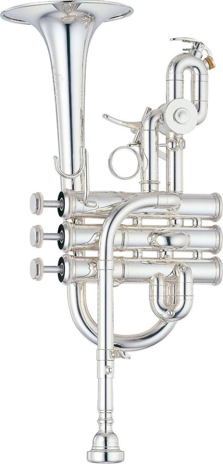 1000+ ideas about Piccolo Trumpet on Pinterest