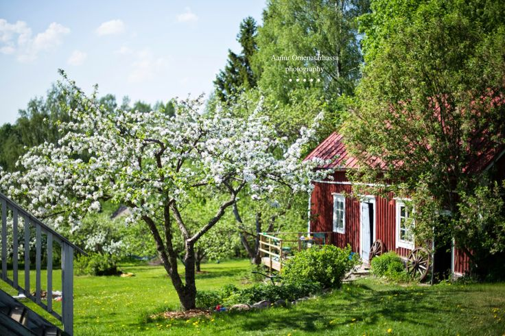 134 Best A Pretty Cottage Images On Pinterest