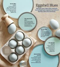 25+ best ideas about Robin egg blue on Pinterest | Robins ...