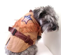 1000+ images about Dog Costumes on Pinterest | A cow ...