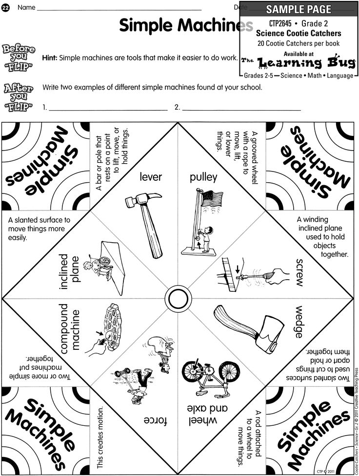 Science: Force & Motion: a collection of Education ideas
