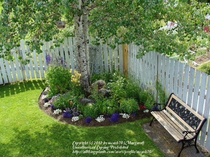 25 Best Ideas About Corner Landscaping On Pinterest Corner