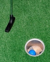 20 best images about Backyard Putting Greens! on Pinterest ...