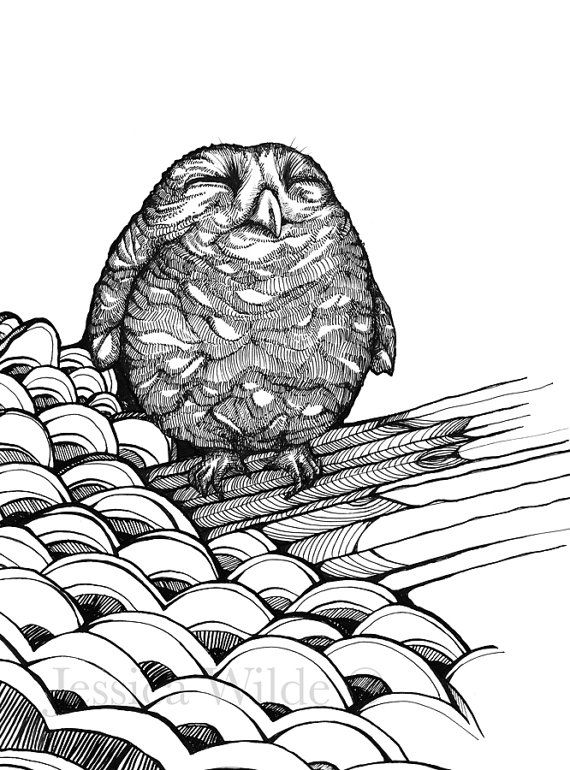 Baby Owl Illustrated Art Print A4 A3 by