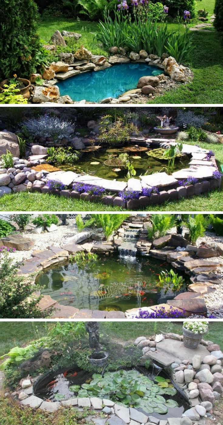 25 Best Ideas About Garden Ponds On Pinterest Pond Ideas Ponds