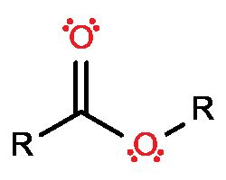 17 Best ideas about Functional Group on Pinterest