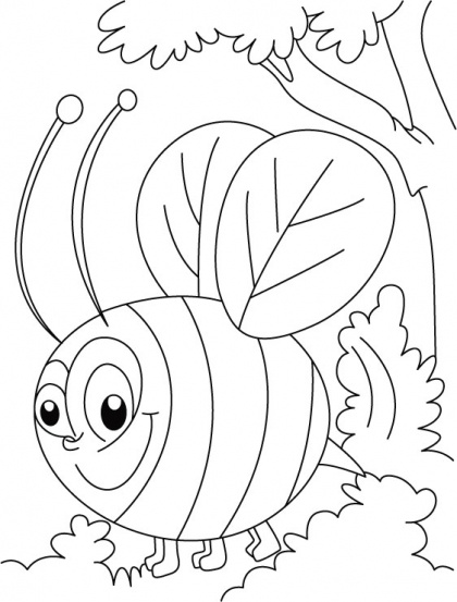 60 best images about bee coloring pages on Pinterest