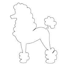 Poodles on Pinterest