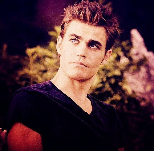 17 Best images about STEFAN SALVATORE on Pinterest Hate