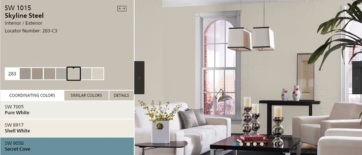 Sherwin Williams Skyline Steel Paint Color Ideas