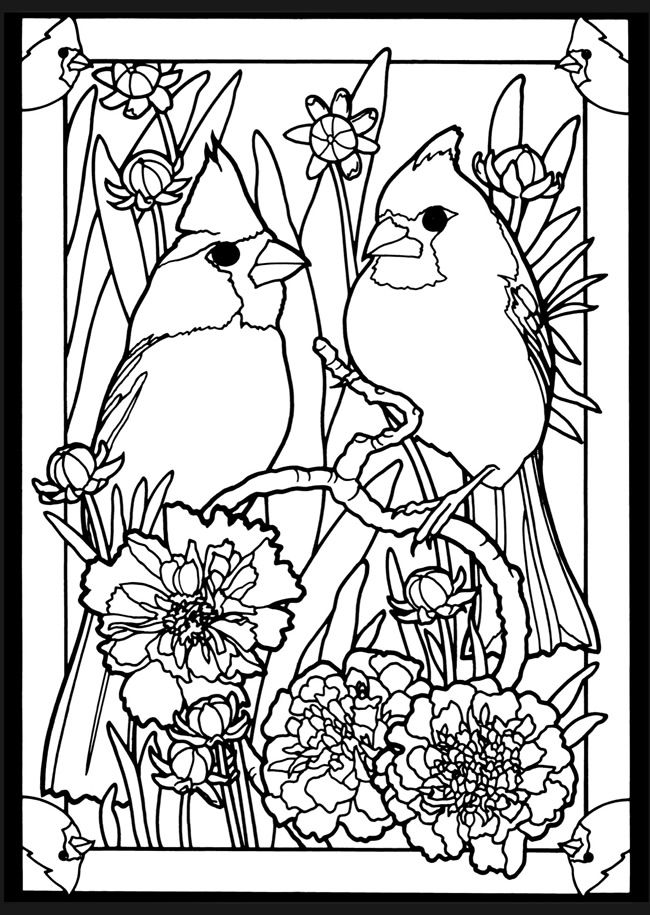 200+ best images about adult coloring pages on Pinterest