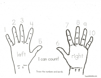 17 Best images about Counting & Number Recognition on