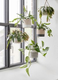 25+ best ideas about Indoor hanging planters on Pinterest ...