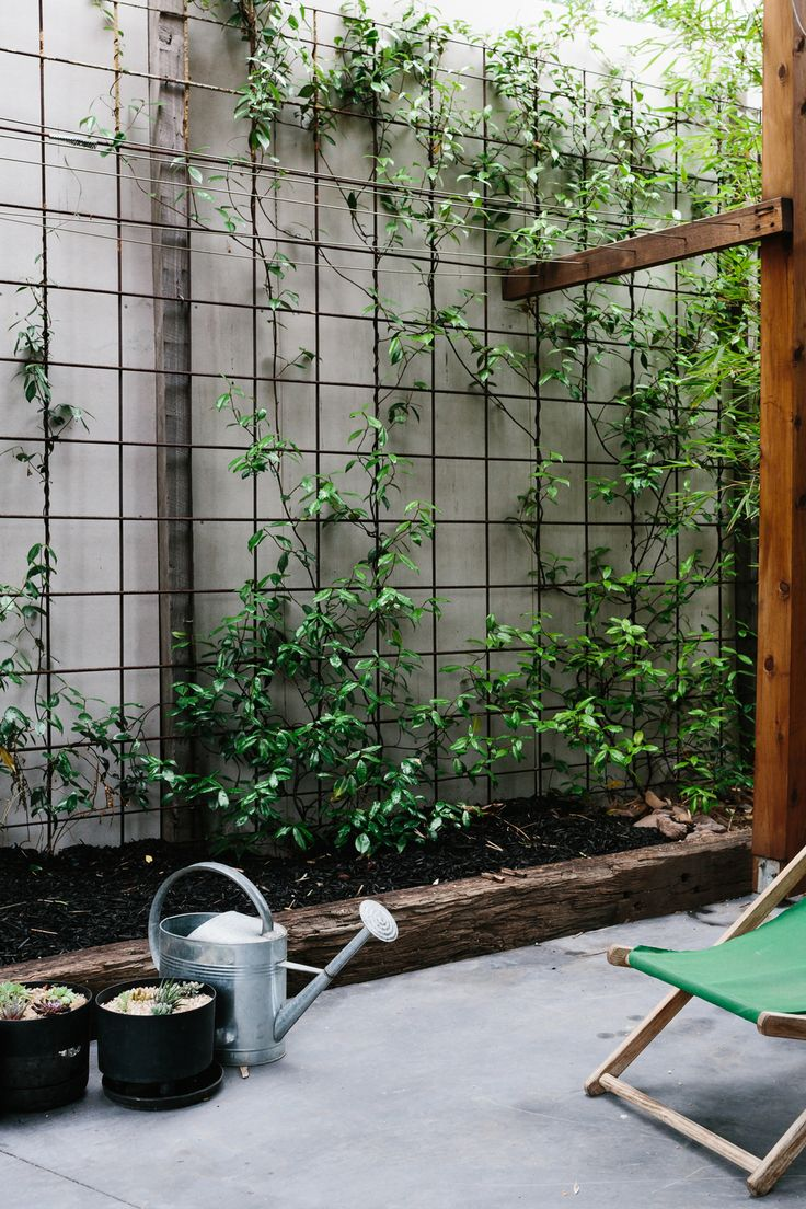 The 25 Best Ideas About Garden Screening On Pinterest Outdoor