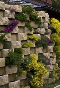 17 Best images about Modern Garden Design on Pinterest ...