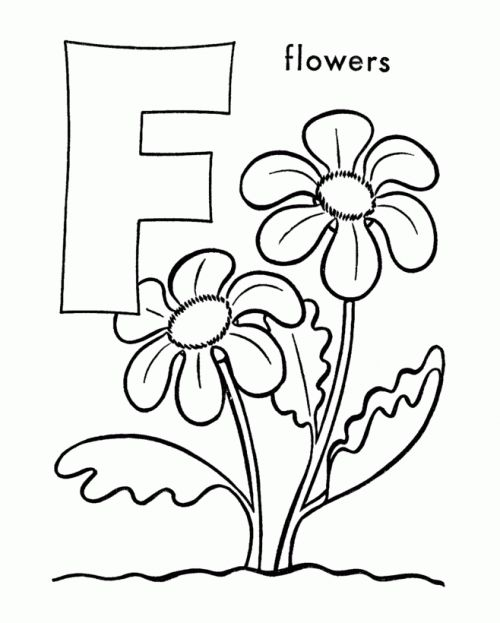 1000+ images about Preschool Theme: Flowers on Pinterest