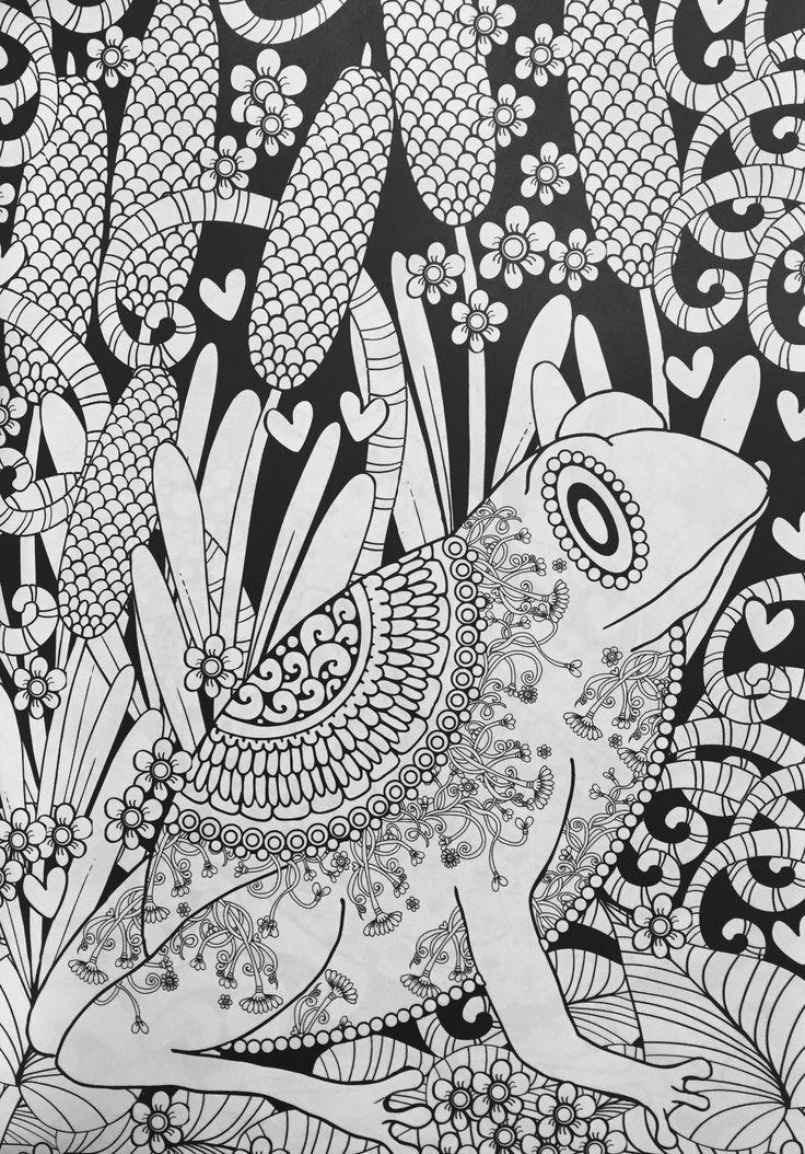 best images about desenho creative midnight animal
