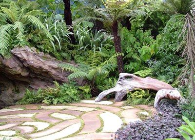 36 Best Images About New Zealand Native Garden Designs On