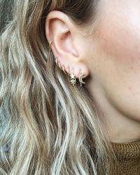 25+ Best Ideas about Double Pierced Earrings on Pinterest ...