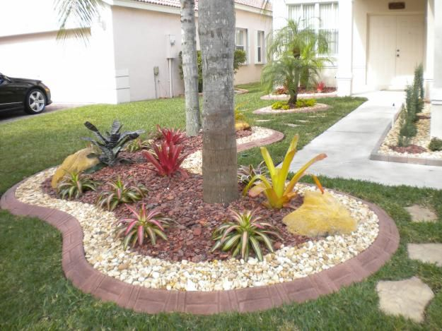 The 62 Best Images About Florida Landscaping On Pinterest