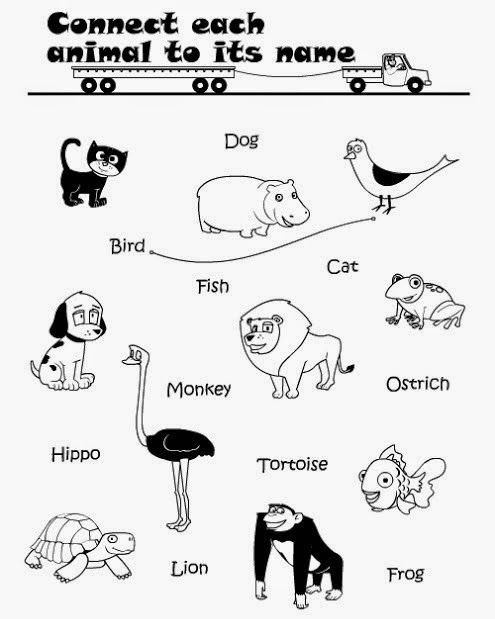 Printable Connect Wild Animals Name Worksheet for Kids