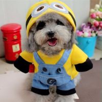 25+ best ideas about Minion Costumes on Pinterest