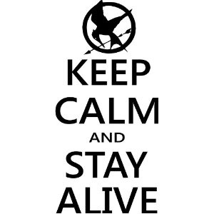 Keep Calm and Stay Alive Hunger Games Mocking Jay wall