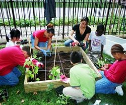 17 Best Images About Elementary School Garden Club On Pinterest
