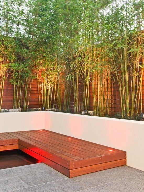 The 25 Best Ideas About Garden Screening On Pinterest Outdoor