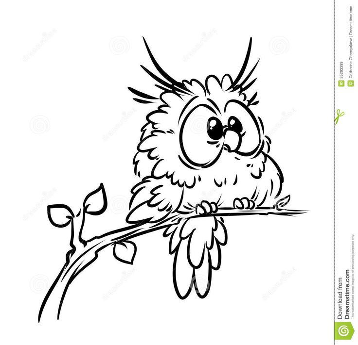 17 Best ideas about Cartoon Owl Pictures on Pinterest
