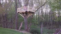 15 best images about Treehouses on Pinterest | Kid tree ...