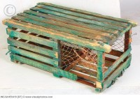 lobster trap table | Coffee Tables are for more than ...