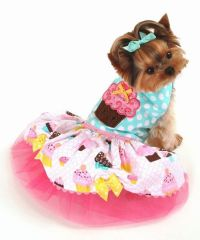 10 best images about small dogs birthday dress on ...
