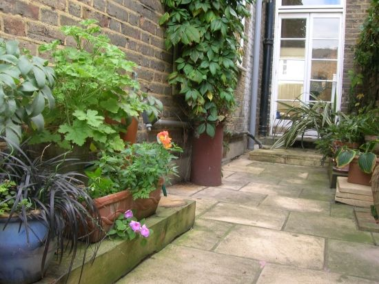 55 Best Images About Long Narrow Courtyard On Pinterest Gardens