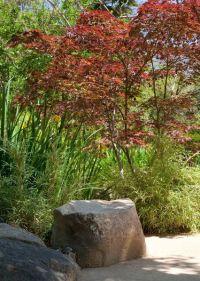 1000+ ideas about Japanese Rock Garden on Pinterest ...