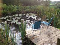 17 Best images about Pond Deck Ideas on Pinterest | Diy ...
