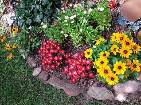 50 Best Images About Small Gardens On Pinterest Gardens Raised