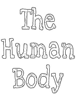 17 Best images about Preschool Theme: Human Body, Emotions