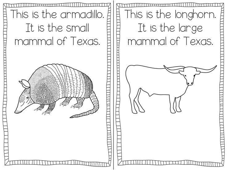 38 best Texas Symbols images on Pinterest