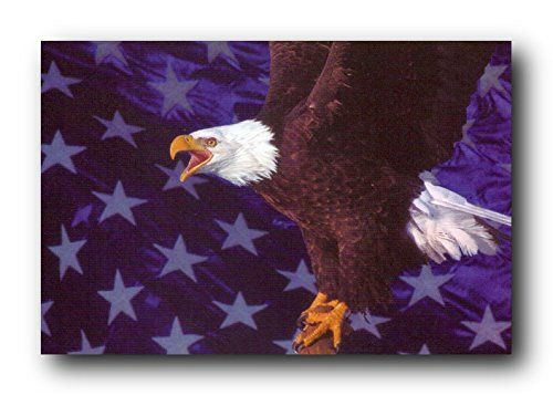 128 Best Images About Eagle Wall Decor Art Print Posters On
