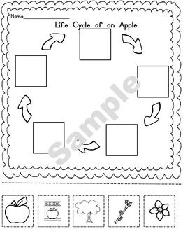 17 Best images about Classroom Materials on Pinterest