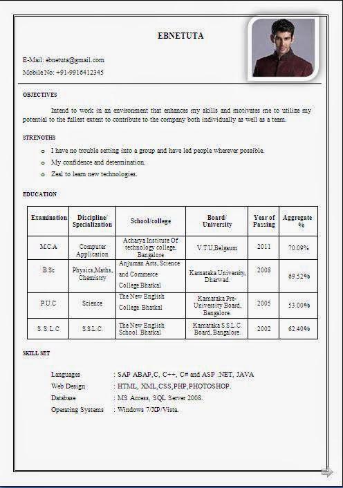 Resume Format For Pharmacy Graduates - Resume Template Ideas