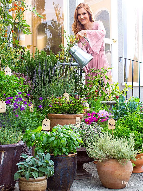 25 Best Ideas About Potted Herb Gardens On Pinterest Herbs