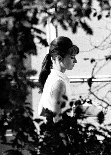 25 Best Ideas About Audrey Hepburn Hairstyles On