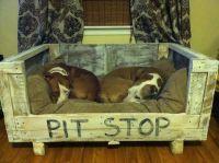 "65 best images about ""Posh Pet Living"" on Pinterest ..."