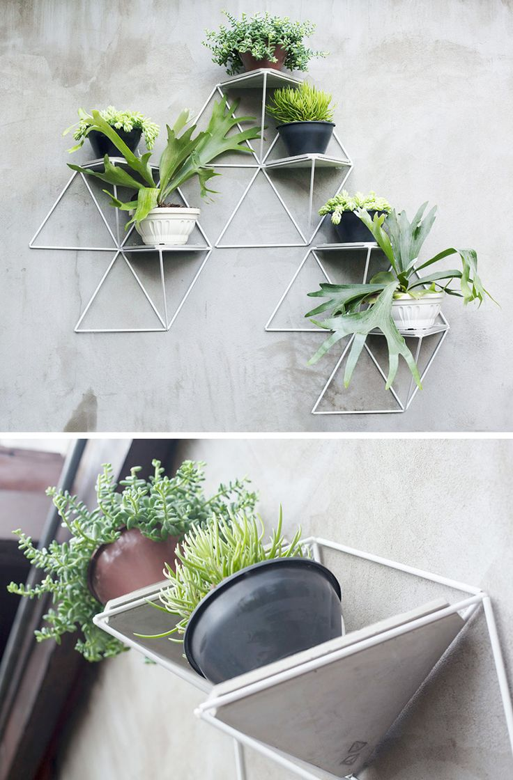 1000+ ideas about Wall Planters on Pinterest