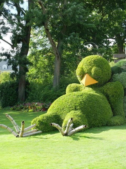 poussin endormi ponti jardin des plantes nantes 20140725  Au vert  Pinterest  Nantes and