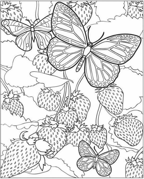 134 best images about Drawing Pattern Template on