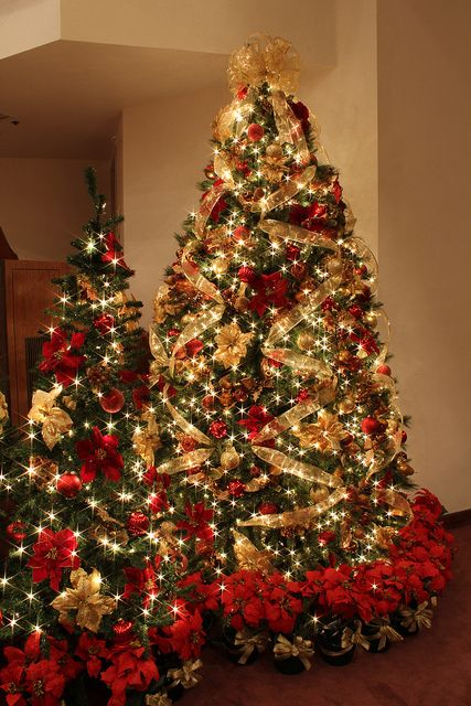 red and gold christmas tree with white lights so spectacular i love the base